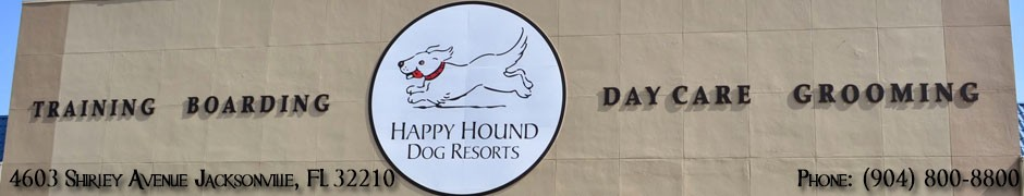 Happy Hound Dog Resorts